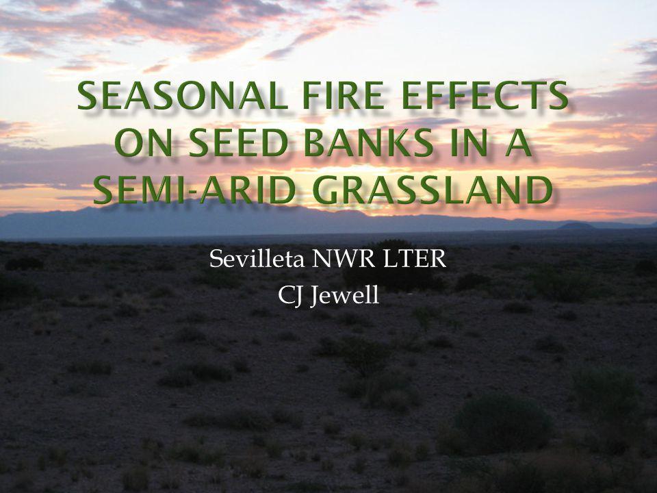 Sevilleta NWR LTER CJ Jewell
