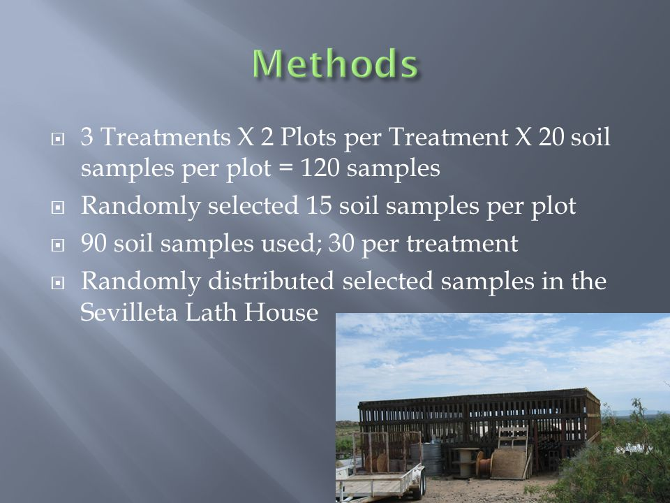 3 Treatments X 2 Plots per Treatment X 20 soil samples per plot = 120 samples Randomly selected 15 soil samples per plot 90 soil samples used; 30 per treatment Randomly distributed selected samples in the Sevilleta Lath House