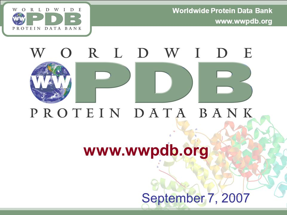 Worldwide Protein Data Bank www.wwpdb.org September 7, 2007