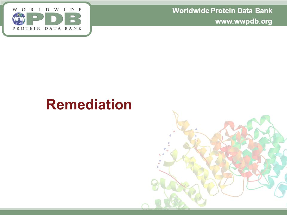 Worldwide Protein Data Bank www.wwpdb.org Remediation