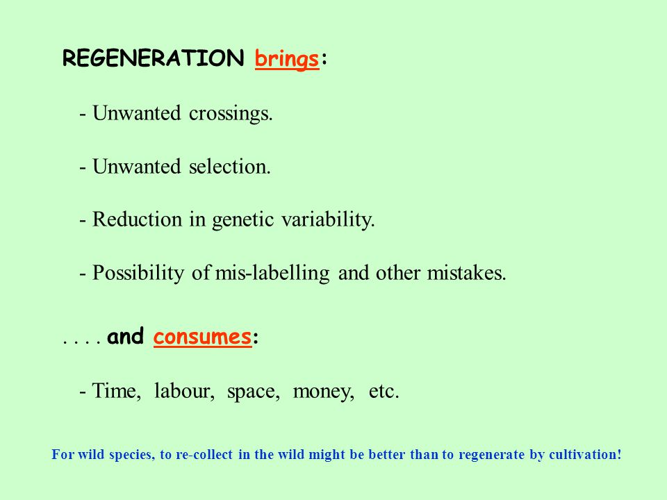 REGENERATION brings: - Unwanted crossings. - Unwanted selection.