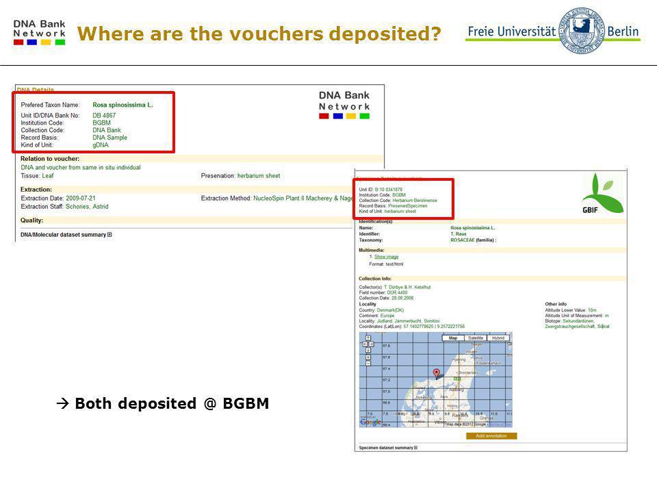 Where are the vouchers deposited? DNA @ BGBM Specimen @ SI