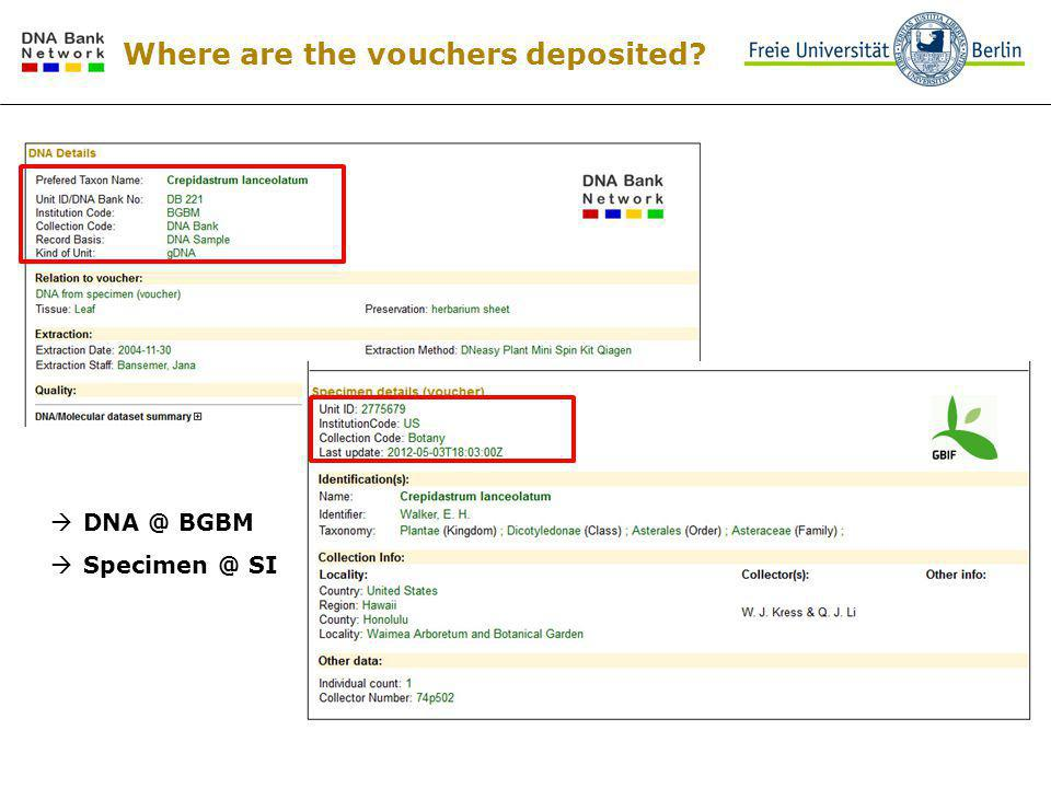 Where are the vouchers deposited DNA @ BGBM Specimen @ SI
