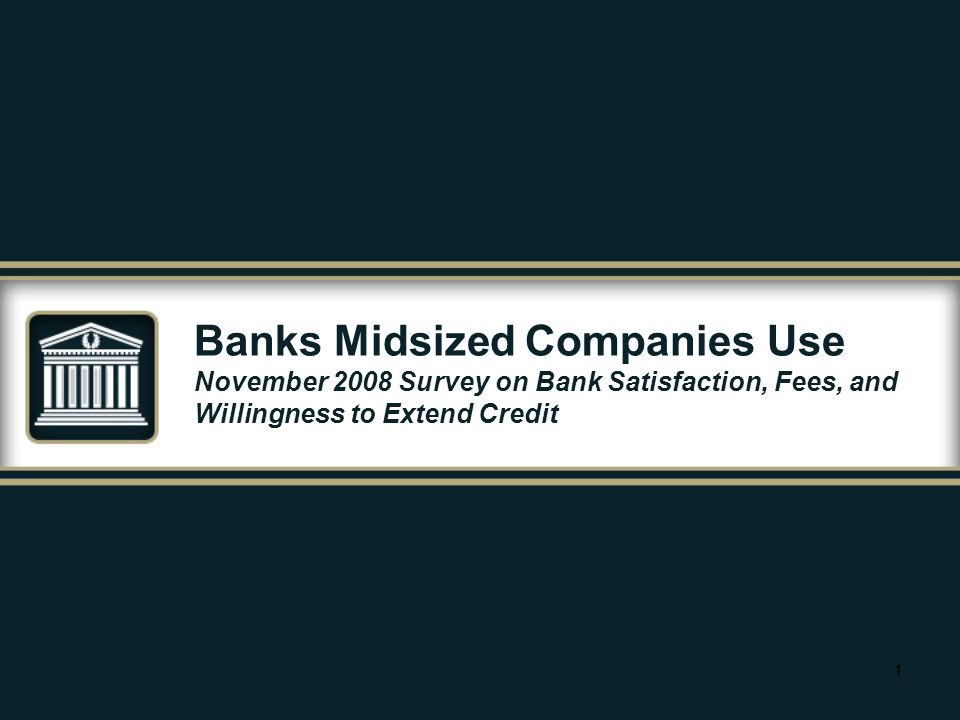 11 Banks Midsized Companies Use November 2008 Survey on Bank Satisfaction, Fees, and Willingness to Extend Credit