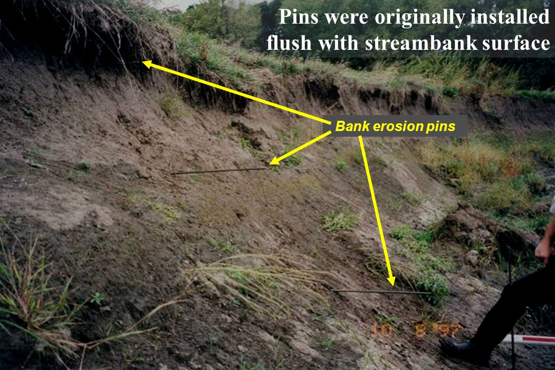 5 Bank erosion pins Pins were originally installed flush with streambank surface