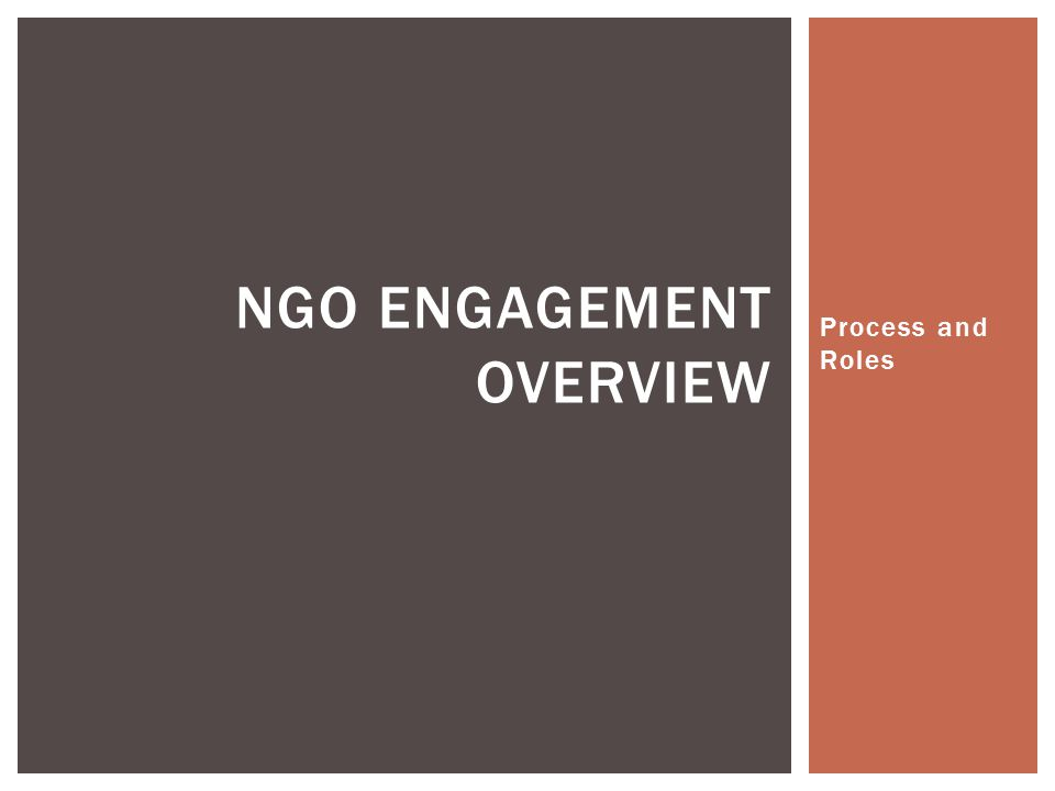 Process and Roles NGO ENGAGEMENT OVERVIEW