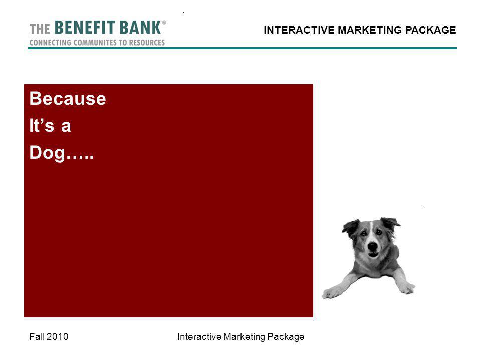 INTERACTIVE MARKETING PACKAGE Fall 2010Interactive Marketing Package Because Its a Dog…..