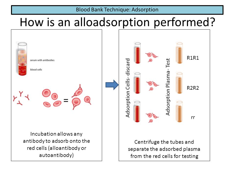 How is an alloadsorption performed? Incubation allows any antibody to adsorb onto the red cells (alloantibody or autoantibody) = Adsorption Cells- dis