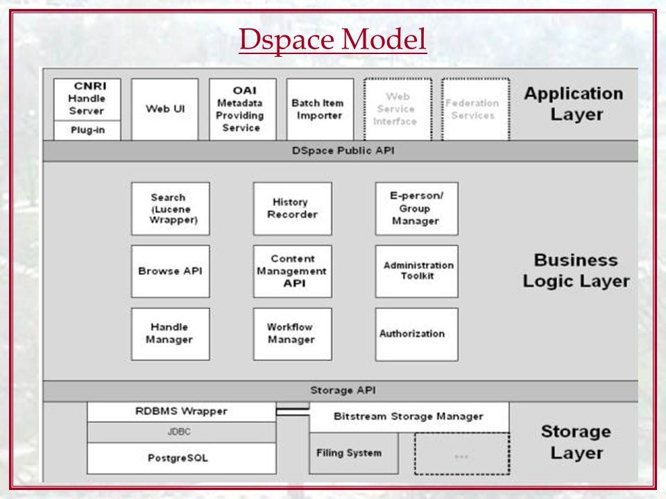 Dspace Model