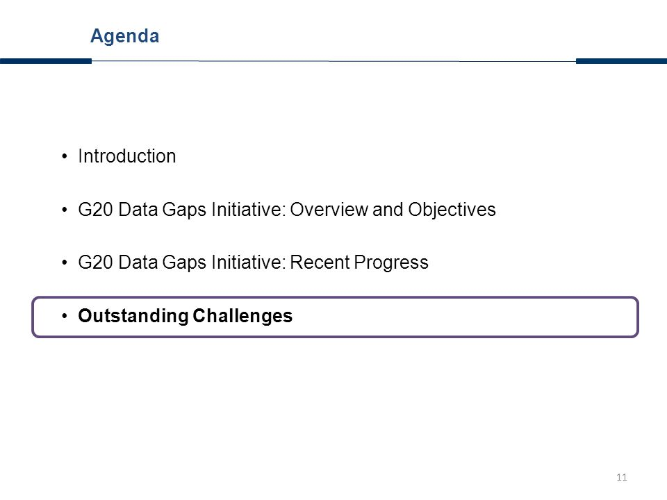 11 Introduction G20 Data Gaps Initiative: Overview and Objectives G20 Data Gaps Initiative: Recent Progress Outstanding Challenges Agenda
