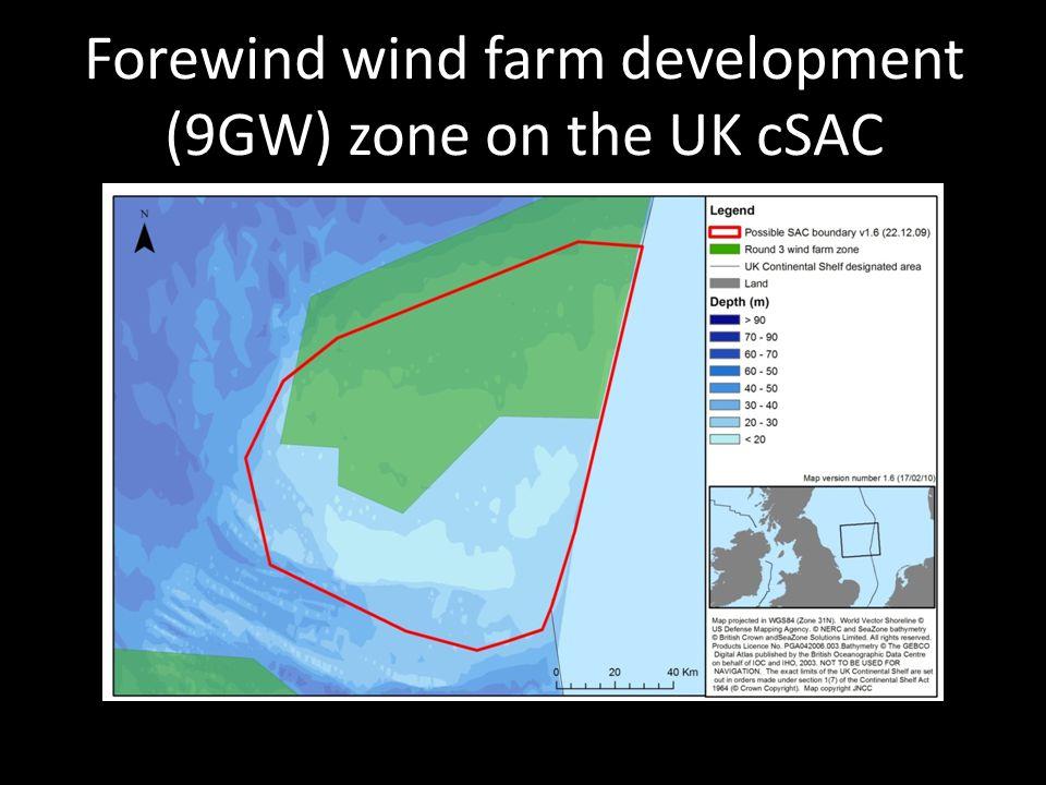 Forewind wind farm development (9GW) zone on the UK cSAC
