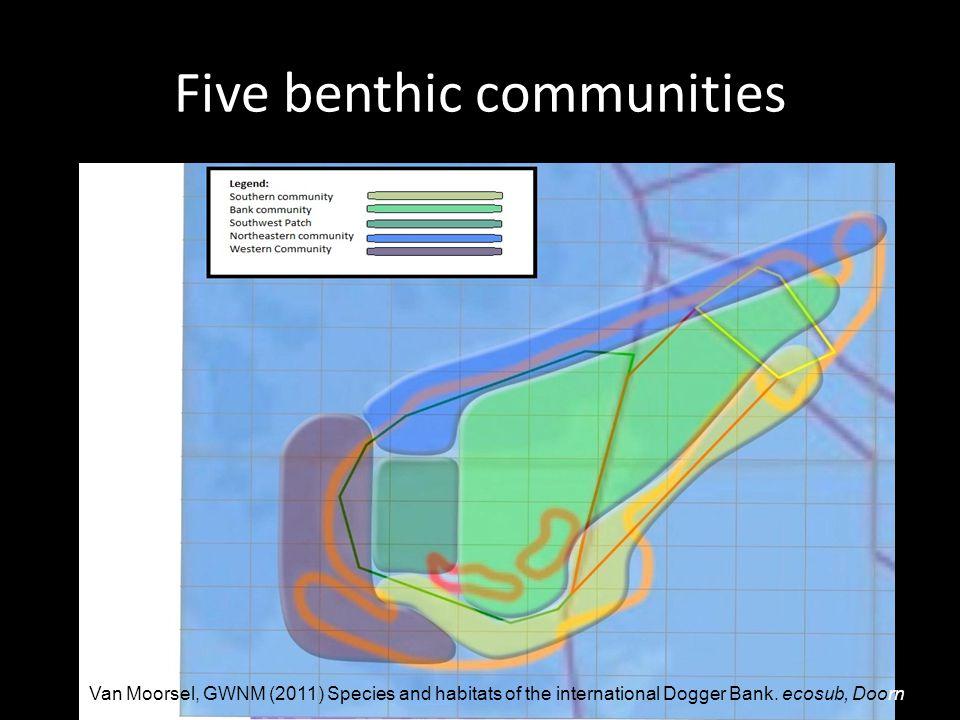 Five benthic communities Van Moorsel, GWNM (2011) Species and habitats of the international Dogger Bank.