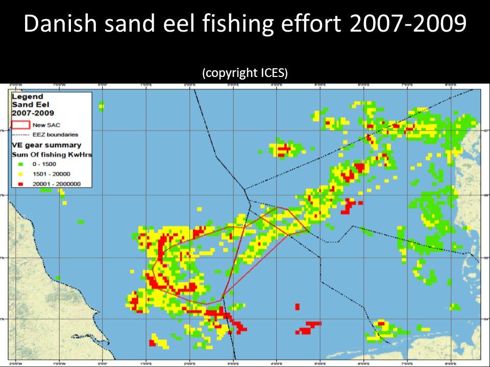 Danish sand eel fishing effort 2007-2009 ( copyright ICES )