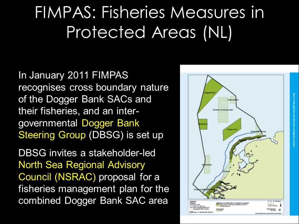 FIMPAS: Fisheries Measures in Protected Areas (NL) In January 2011 FIMPAS recognises cross boundary nature of the Dogger Bank SACs and their fisheries, and an inter- governmental Dogger Bank Steering Group (DBSG) is set up DBSG invites a stakeholder-led North Sea Regional Advisory Council (NSRAC) proposal for a fisheries management plan for the combined Dogger Bank SAC area
