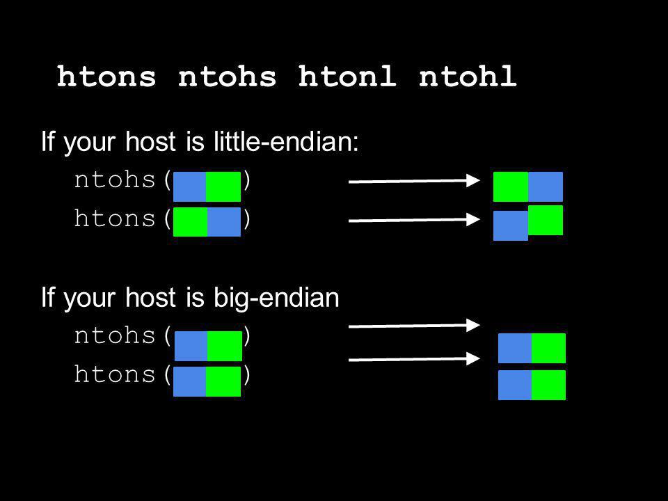 htons ntohs htonl ntohl If your host is little-endian: ntohs( ) htons( ) If your host is big-endian ntohs( ) htons( )