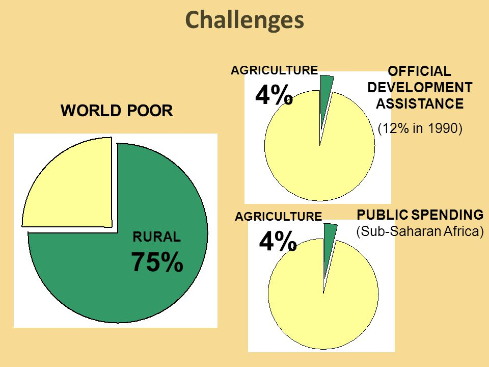 OFFICIAL DEVELOPMENT ASSISTANCE (12% in 1990) PUBLIC SPENDING (Sub-Saharan Africa) AGRICULTURE 4% RURAL 75% AGRICULTURE 4% Challenges WORLD POOR