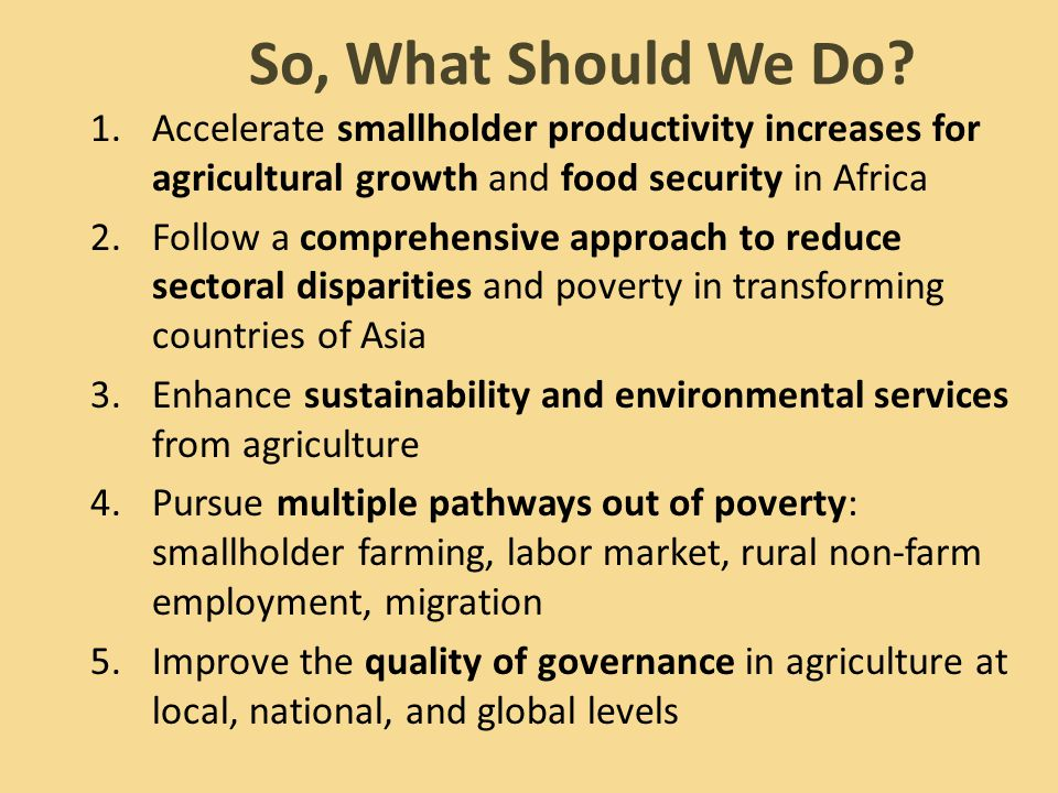 So, What Should We Do? 1.Accelerate smallholder productivity increases for agricultural growth and food security in Africa 2.Follow a comprehensive ap
