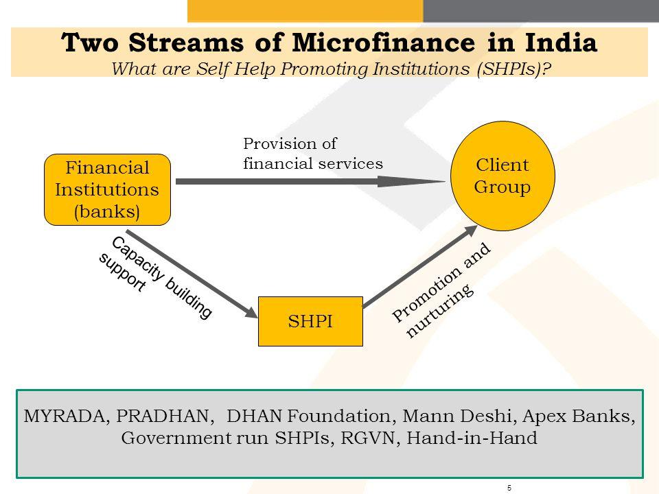 Loans SHG LoansSavings Financial Institutions (e.g.