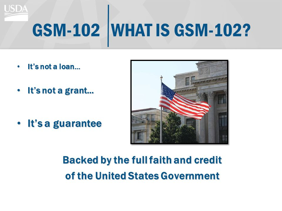 WHAT IS GSM-102?GSM-102 Its not a loan… Its not a loan… Its not a grant… Its not a grant… Its a guarantee Its a guarantee Backed by the full faith and credit of the United States Government
