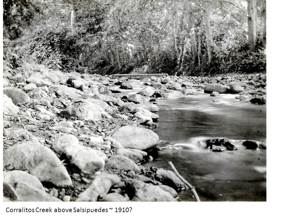 Corralitos Creek above Salsipuedes ~ 1910