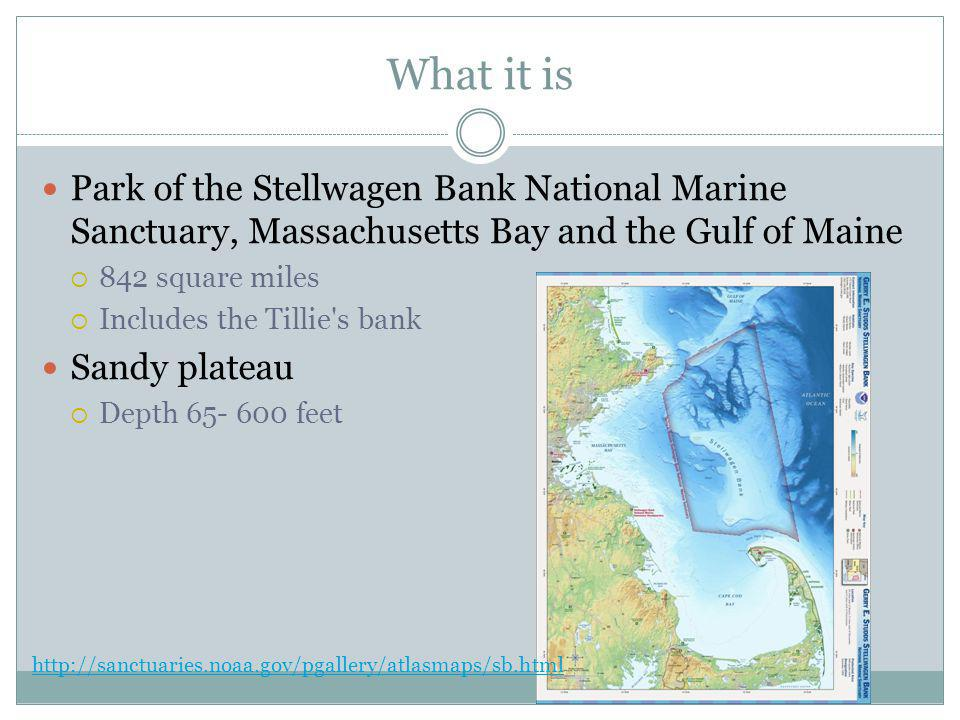 Founder Henry Stellwagen Lieutenant Commander of the US Navy Also sampled the type of soil it was made of Finished mapping in 1854 http://stellwagen.noaa.gov/about/discovery.html