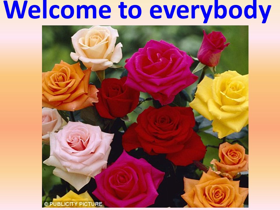 Welcome to everybody