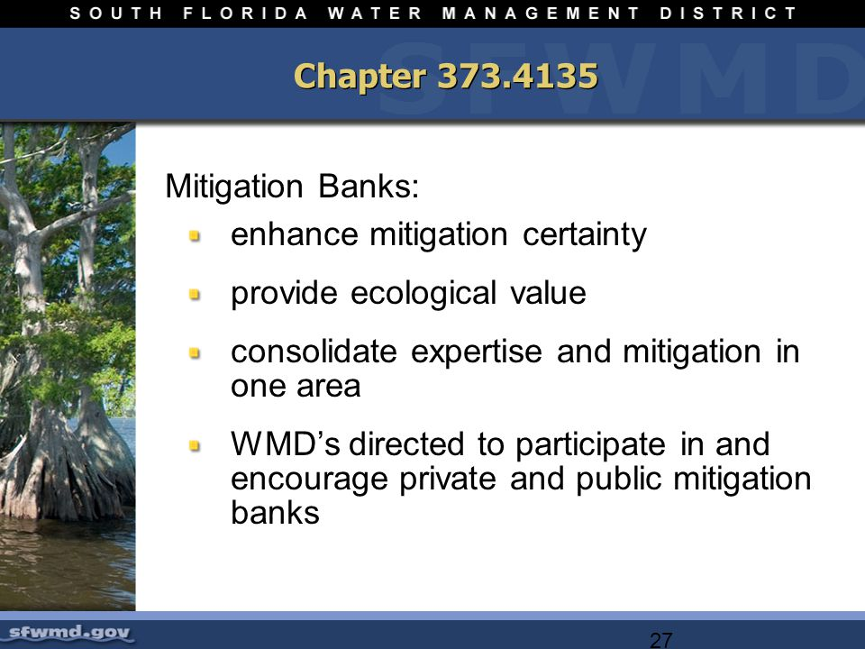27 Chapter Mitigation Banks: enhance mitigation certainty provide ecological value consolidate expertise and mitigation in one area WMDs directed to participate in and encourage private and public mitigation banks