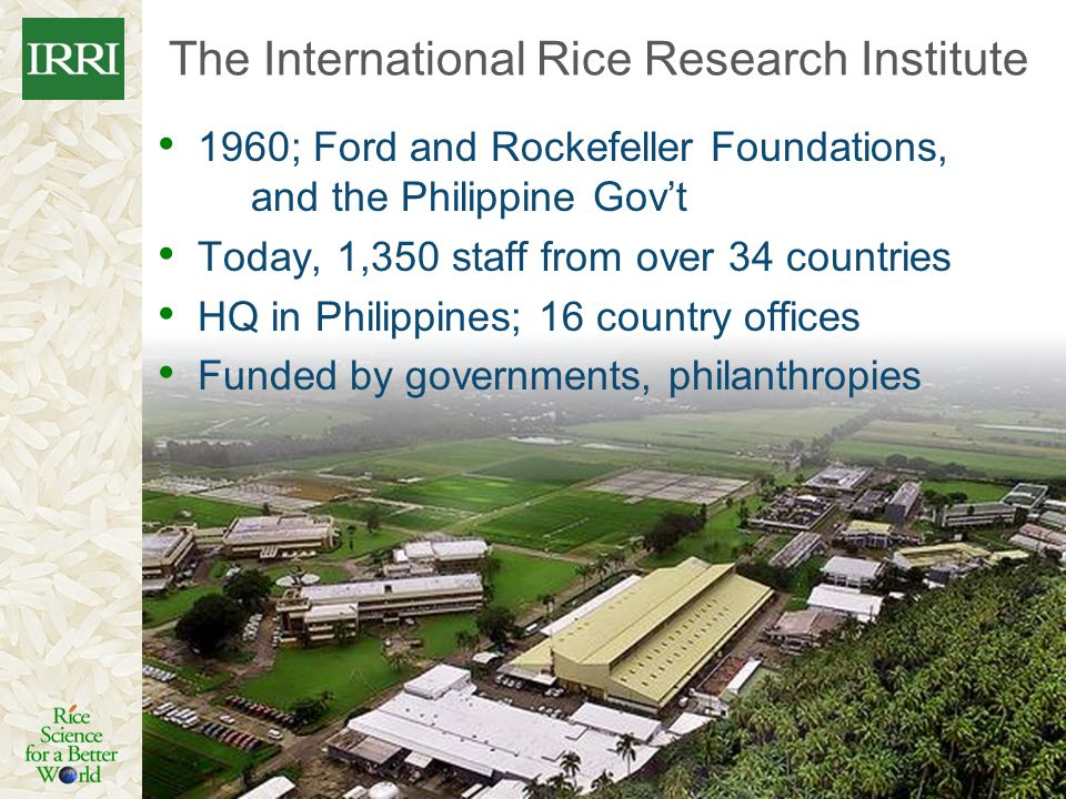 1960; Ford and Rockefeller Foundations, and the Philippine Govt Today, 1,350 staff from over 34 countries HQ in Philippines; 16 country offices Funded