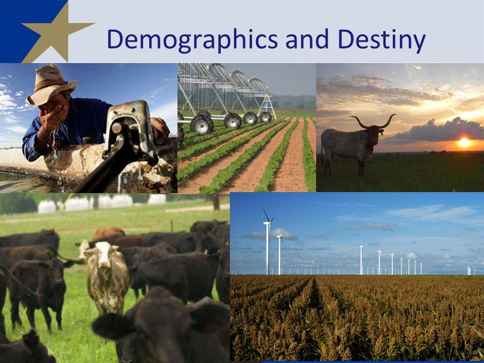 Demographics and Destiny 31