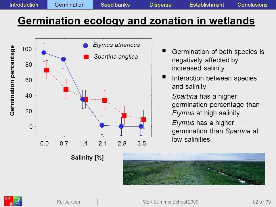 Germination ecology and zonation in wetlands Germination of both species is negatively affected by increased salinity Interaction between species and salinity Spartina has a higher germination percentage than Elymus at high salinity Elymus has a higher germination than Spartina at low salinities ConclusionsEstablishmentSeed banksGerminationIntroductionDispersal 02.07.09 Kai JensenSER Summer School 2009