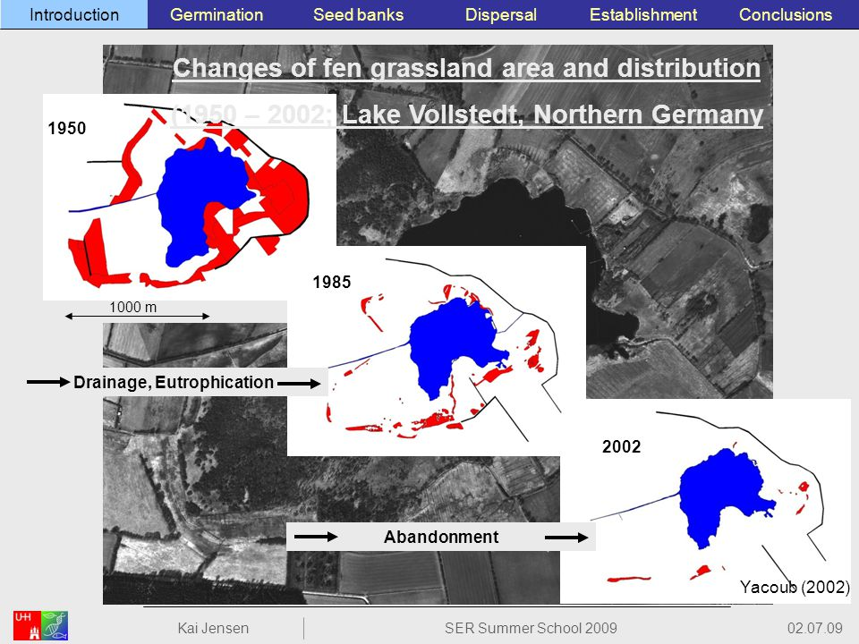 1000 m 1950 1985 2002 Drainage, Eutrophication Abandonment Changes of fen grassland area and distribution (1950 – 2002; Lake Vollstedt, Northern Germany 02.07.09 Kai JensenSER Summer School 2009 ConclusionsEstablishmentSeed banksGerminationIntroductionDispersal Yacoub (2002)