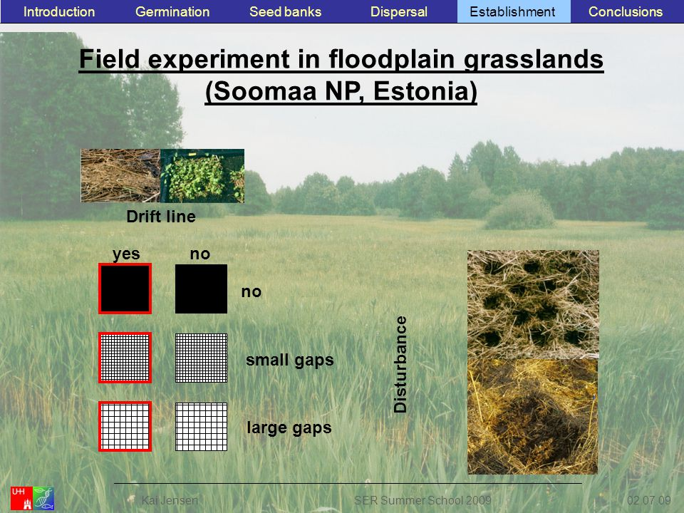 Field experiment in floodplain grasslands (Soomaa NP, Estonia) Drift line Disturbance yesno small gaps large gaps ConclusionsEstablishmentSeed banksGerminationIntroductionDispersal 02.07.09 Kai JensenSER Summer School 2009