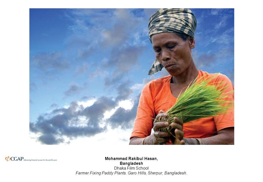 Mohammad Rakibul Hasan, Bangladesh Dhaka Film School Farmer Fixing Paddy Plants.