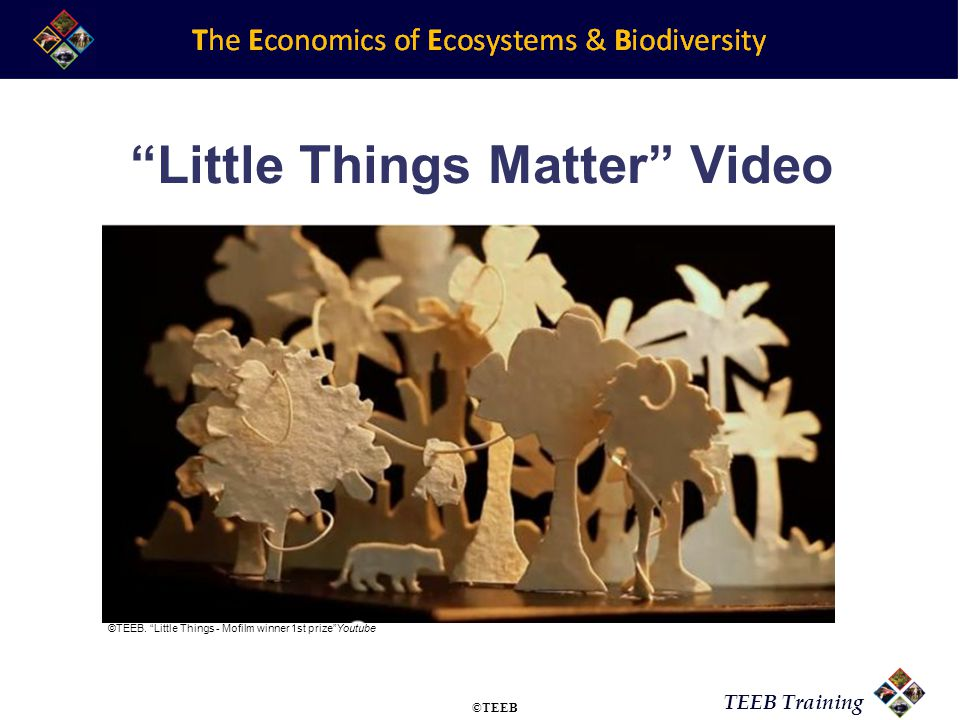 TEEB Training Little Things Matter Video ©TEEB.