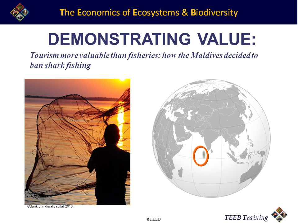 TEEB Training DEMONSTRATING VALUE: Tourism more valuable than fisheries: how the Maldives decided to ban shark fishing ©Bank of natural capital, 2010.