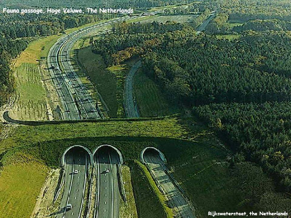 Rijkswaterstaat, the Netherlands Fauna passage, Hoge Veluwe, The Netherlands
