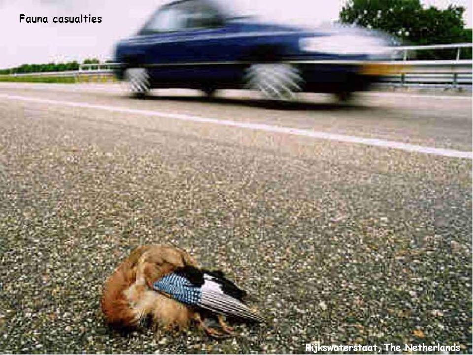 Rijkswaterstaat, The Netherlands Fauna casualties
