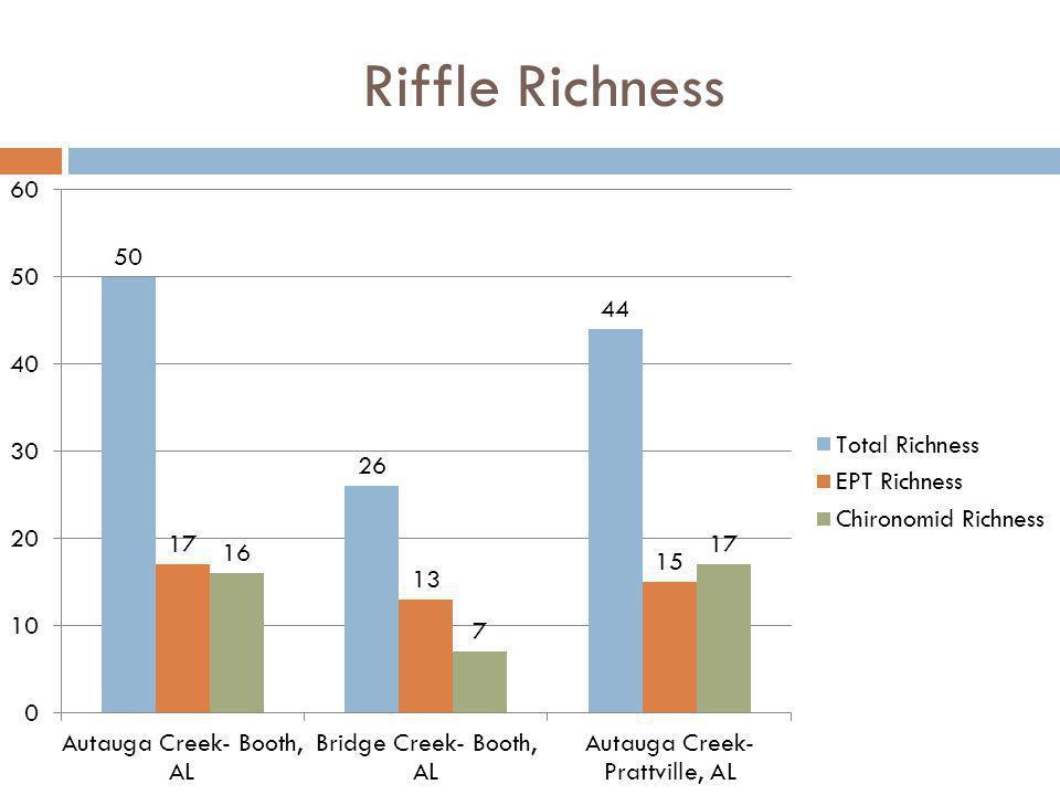 Riffle Richness