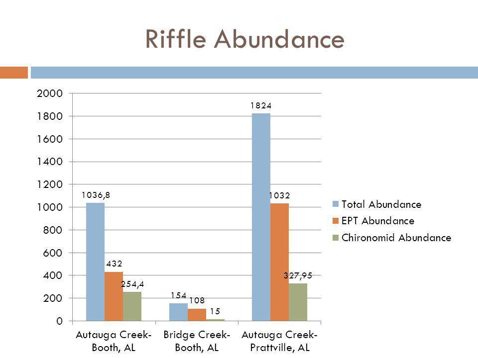 Riffle Abundance