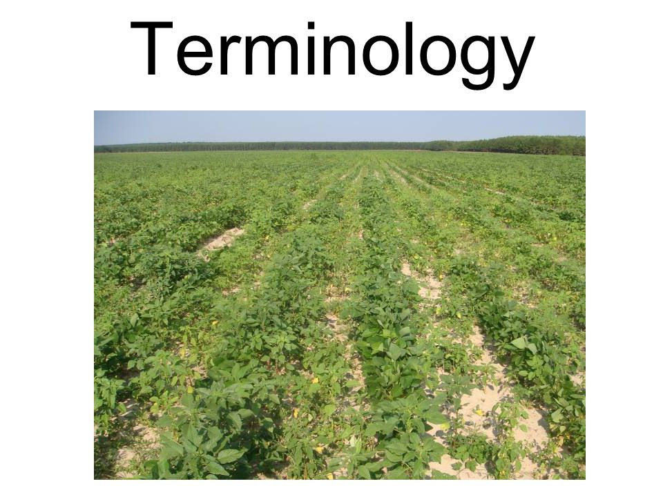 Herbicide Resistance Defined (WSSA definition) Inherited ability of a biotype of a weed to surviveand reproduce following exposure to a dose of herbicide normally lethal to the wild type.