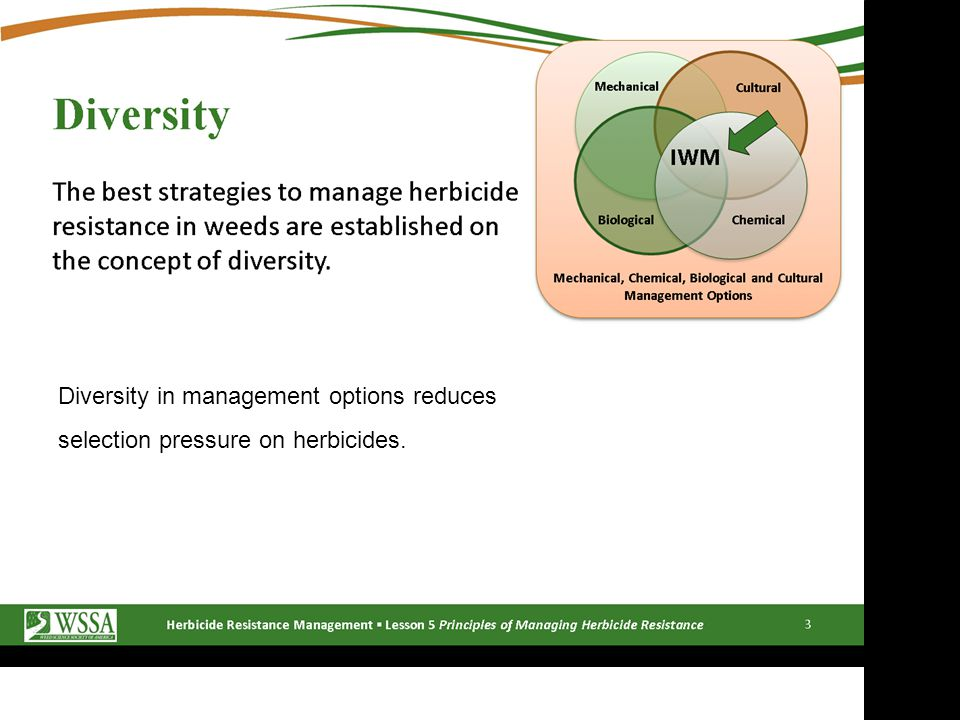 Diversity in management options reduces selection pressure on herbicides.