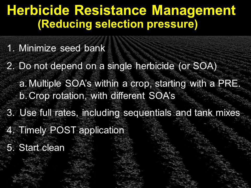 Herbicide Resistance Management 1. Minimize seed bank 2.
