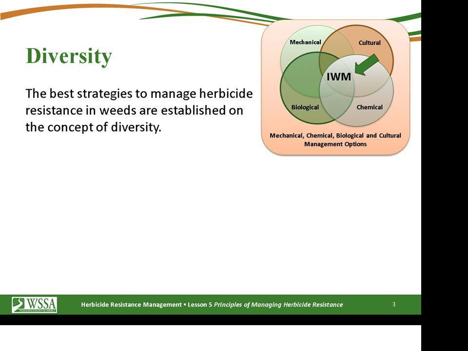 Glyphosate- Resistant Weeds in NC