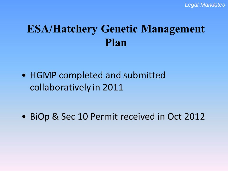 HGMP completed and submitted collaboratively in 2011 BiOp & Sec 10 Permit received in Oct 2012 ESA/Hatchery Genetic Management Plan Legal Mandates