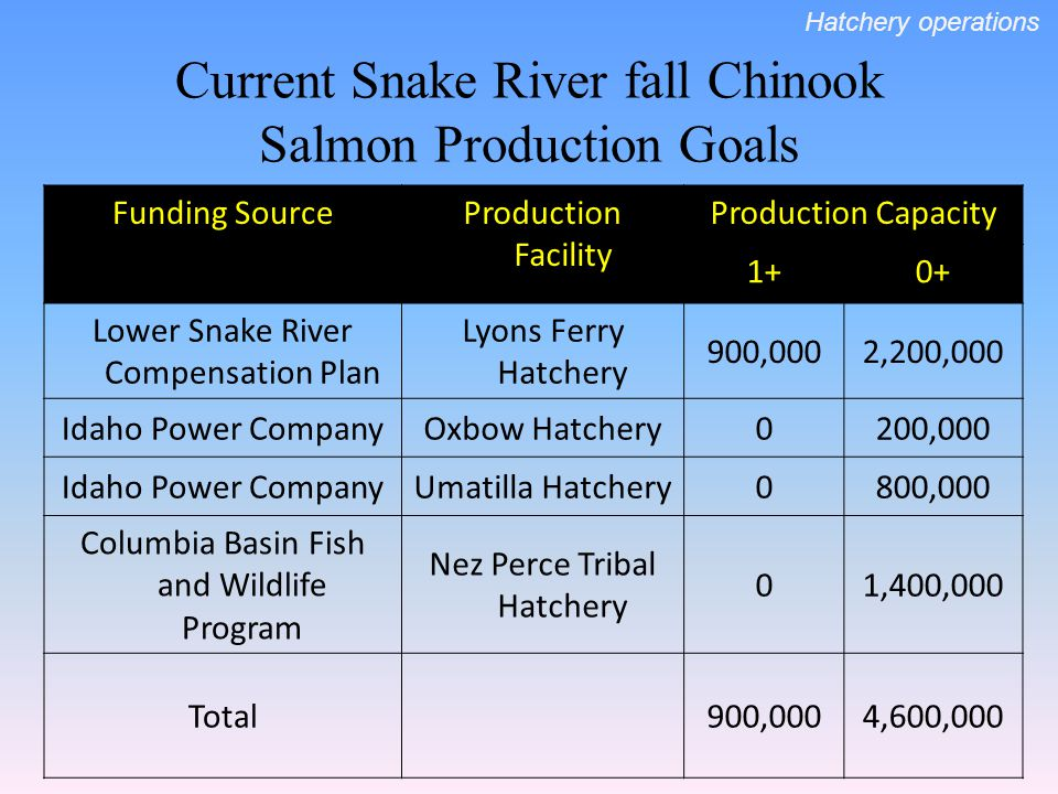 Current Snake River fall Chinook Salmon Production Goals Funding SourceProduction Facility Production Capacity 1+0+ Lower Snake River Compensation Pla