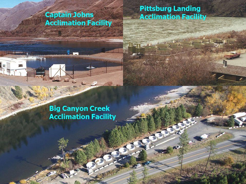 Captain John Rapids Acclimation Facility Pittsburg Landing Acclimation Facility Big Canyon Creek Acclimation Facility Captain Johns Acclimation Facility