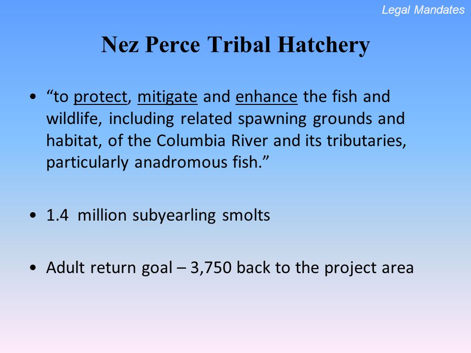 Nez Perce Tribal Hatchery to protect, mitigate and enhance the fish and wildlife, including related spawning grounds and habitat, of the Columbia River and its tributaries, particularly anadromous fish.