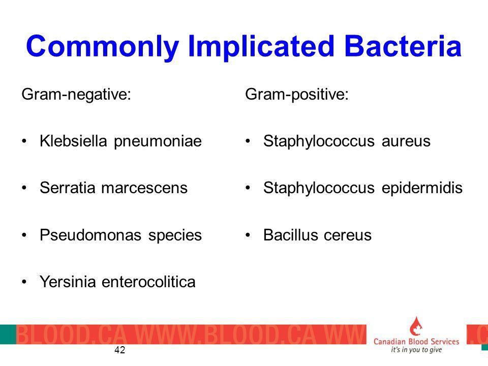 Commonly Implicated Bacteria Gram-positive: Staphylococcus aureus Staphylococcus epidermidis Bacillus cereus 42 Gram-negative: Klebsiella pneumoniae Serratia marcescens Pseudomonas species Yersinia enterocolitica
