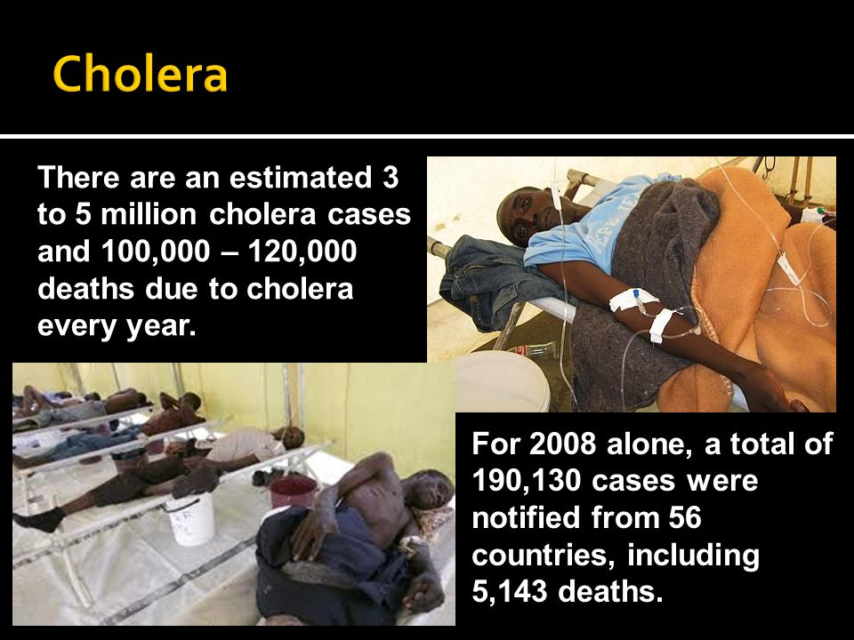 There are an estimated 3 to 5 million cholera cases and 100,000 – 120,000 deaths due to cholera every year.