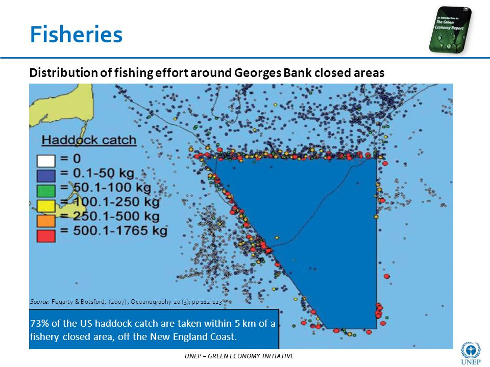 UNEP – GREEN ECONOMY INITIATIVE Source: Fogarty & Botsford, (2007), Oceanography 20 (3); pp 112-123 73% of the US haddock catch are taken within 5 km of a fishery closed area, off the New England Coast.